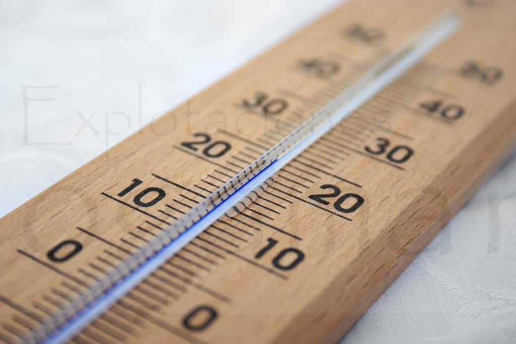 temperatura-para-plantas