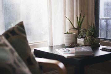 Plantas que ayudan a dormir mejor