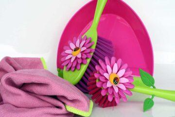 limpiar-las-plantas-de-interior