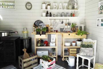 Mejores plantas de interior para la cocina