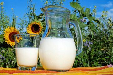 usos-de-la-leche-en-las-plantas-ornamentales